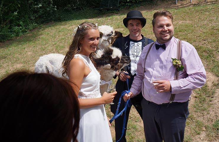 Wedding Circus Styled Shoot Mit Alpakas Hochzeitsblog I Brautsalat